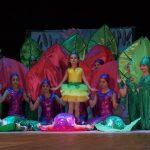 Кращий шкільний театр – у Лубнах