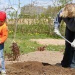 Привчаємо допомагати в садку і на городі