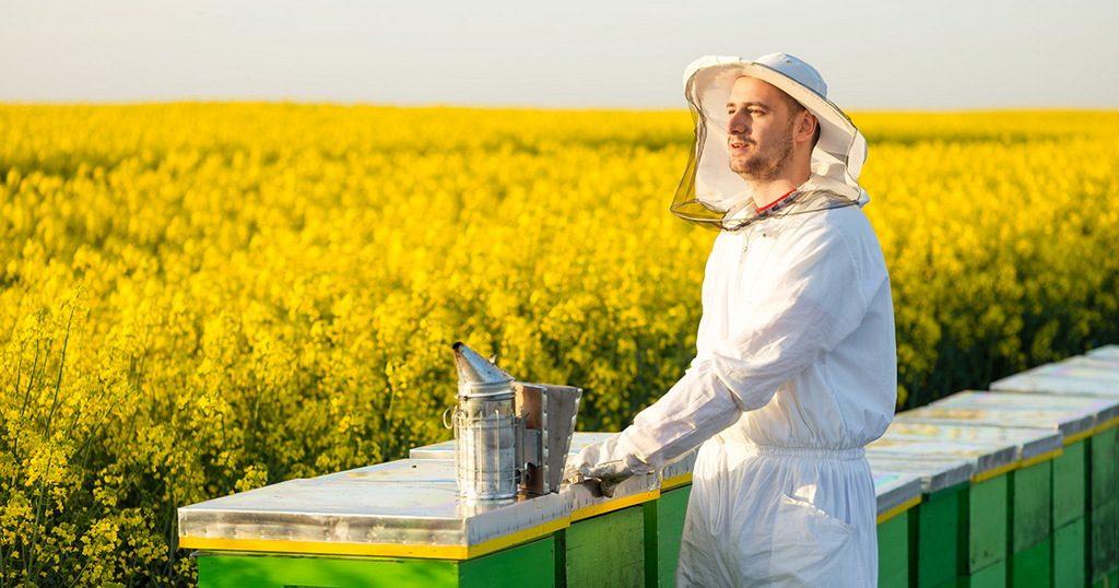 Потруїли бджіл. Що робити?