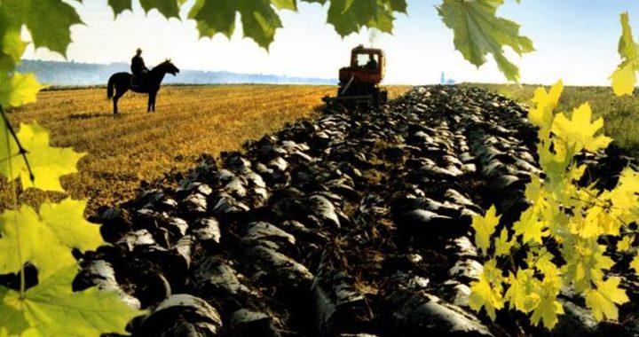 Чи слід запускати ринок землі в Україні,  або Чому вчить власний історичний досвід?