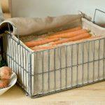 Секрети тривалого зберігання моркви