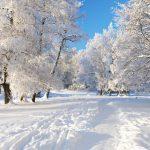 У грудні зима стелить полотна, мороз зводить мости