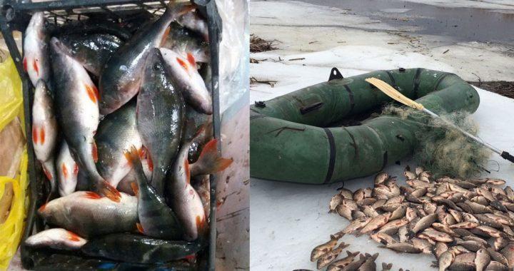 Триває боротьба з браконьєрами