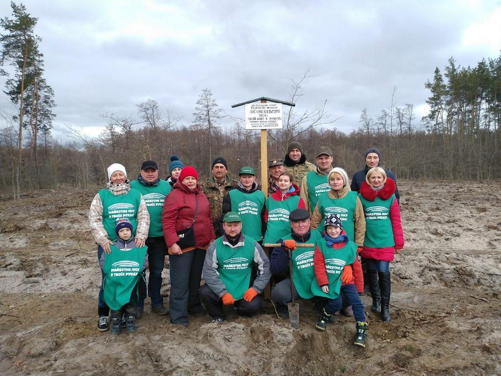 Збільшуються площі молодих соснових лісів