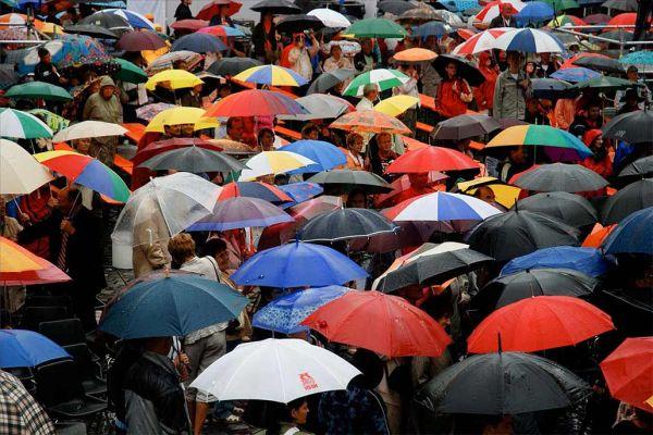 Вибираємо парасольку: практичні рекомендації
