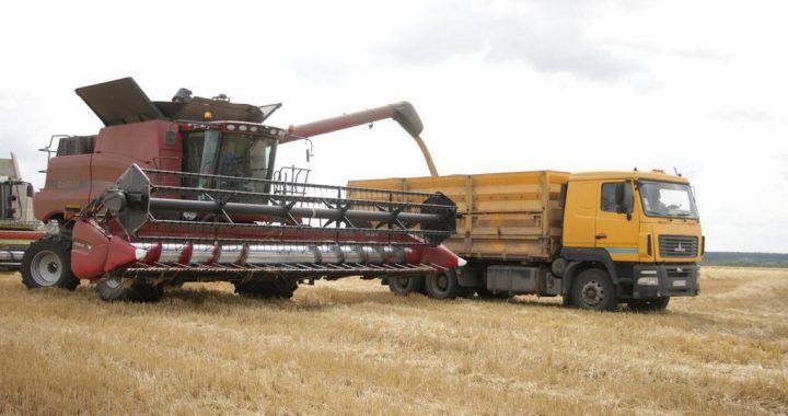 Новий Яреськівський елеватор може  приймати до 7,2 тисячі тонн зерна на добу