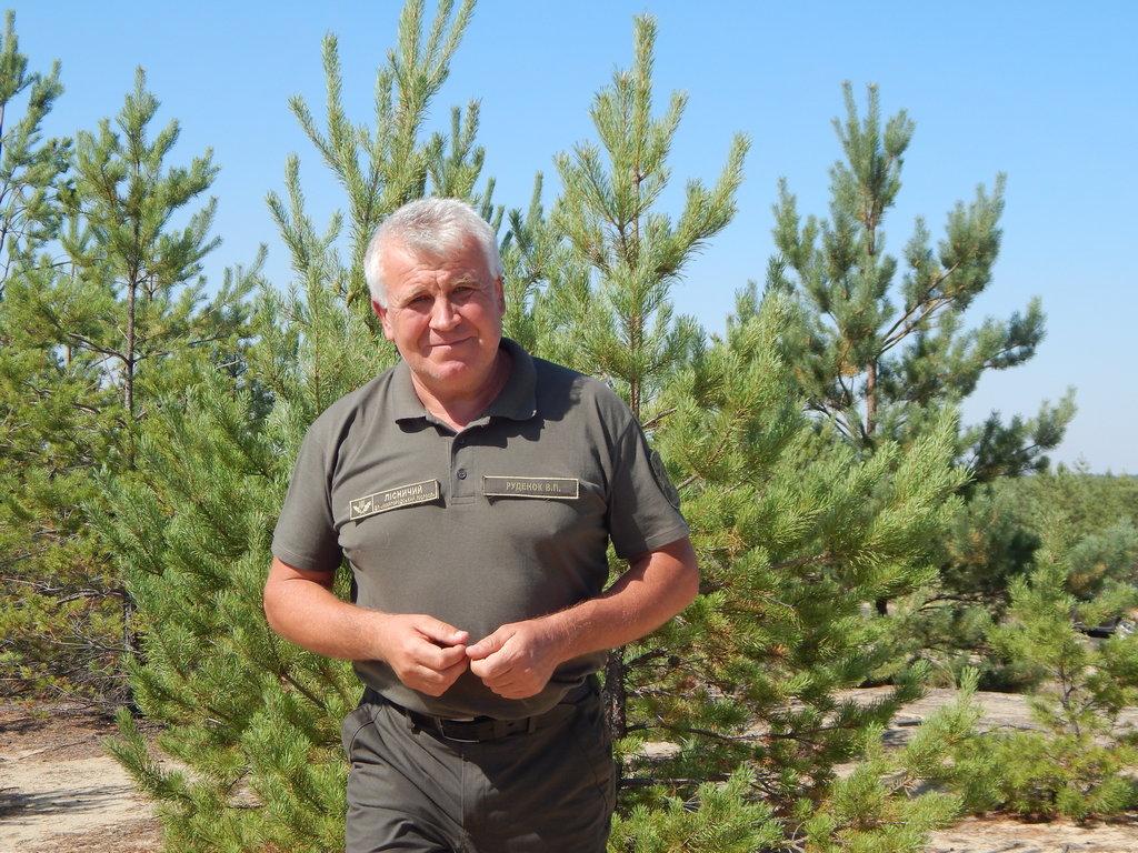 За два роки полтавські лісівники відновили майже 500 гектарів згорілого лісу і щороку вирощують близько трьох мільйонів саджанців