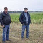 Вирощування цукрового буряку – вищий пілотаж сільгоспвиробництва