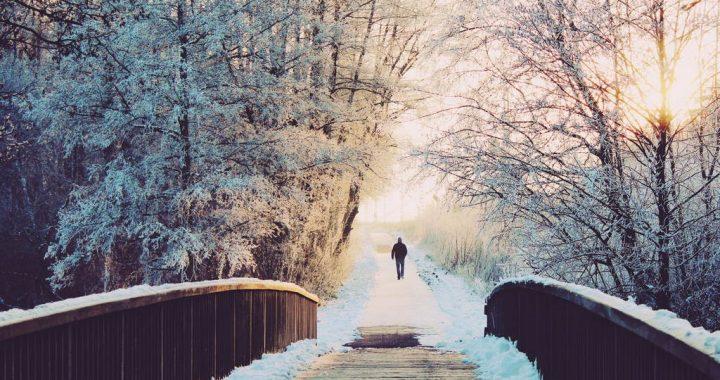 Лютий завершує зиму, додає приємних клопотів господарям