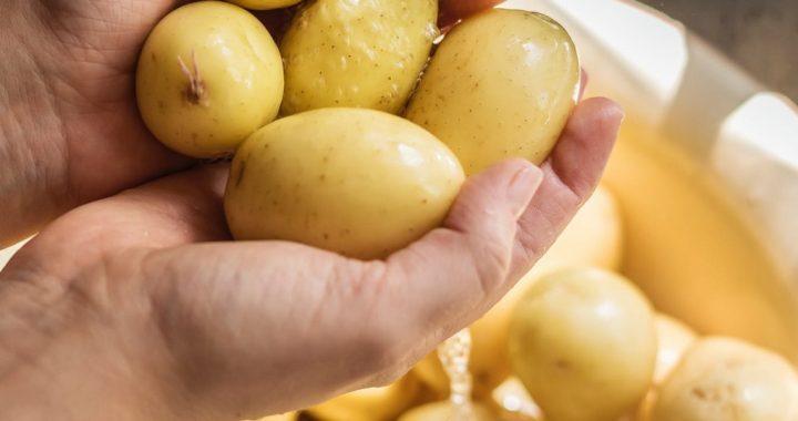 Молода картопля –  «пальчики оближеш»