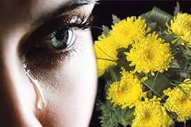Хризантеми для пройдисвіта