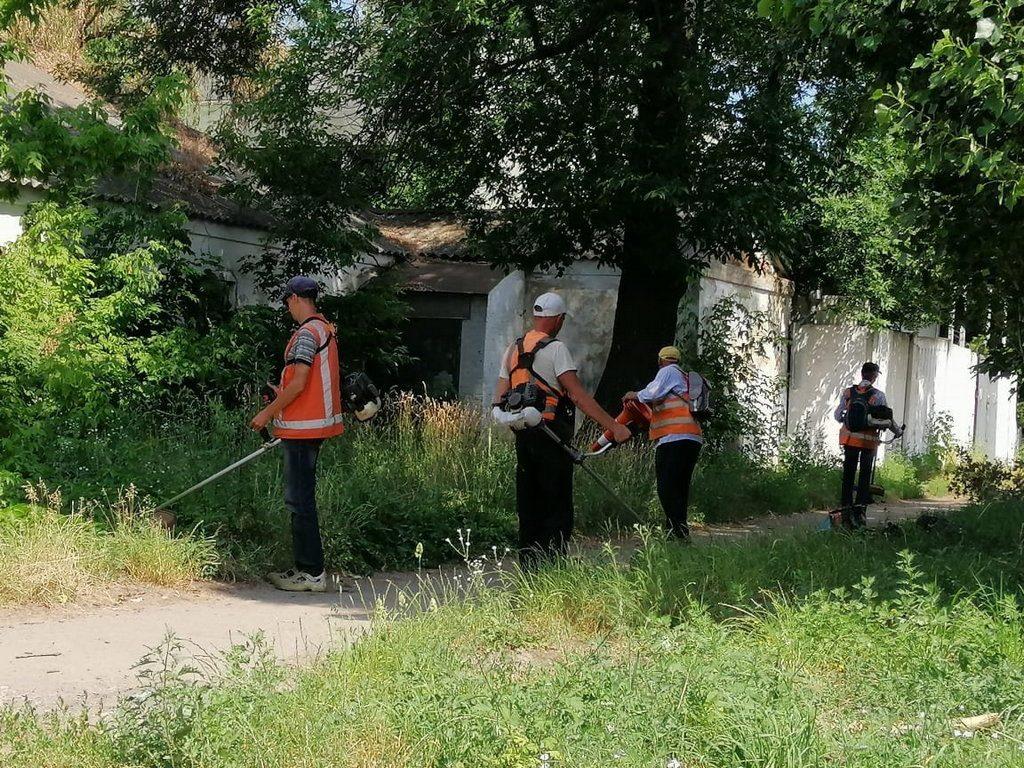 Комунальники косять траву на всій території Полтави