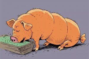 «Свинське» питання, або Історія про те,  як тварини розсварили людей