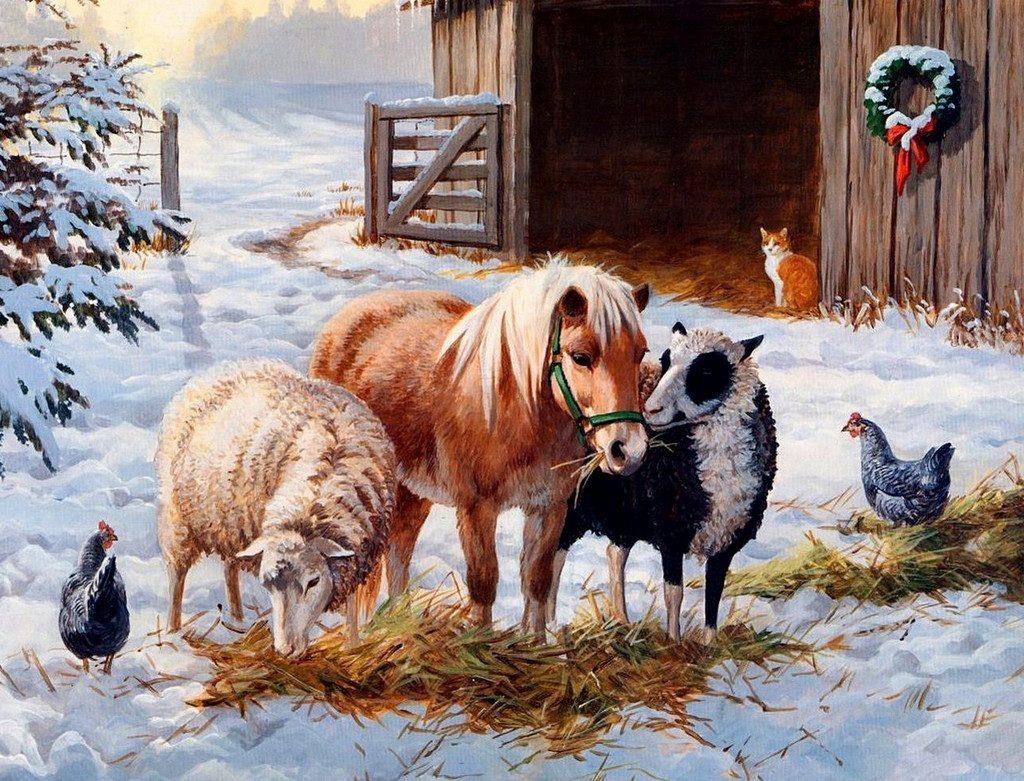 Переведення домашніх тварин на «зимові квартири»