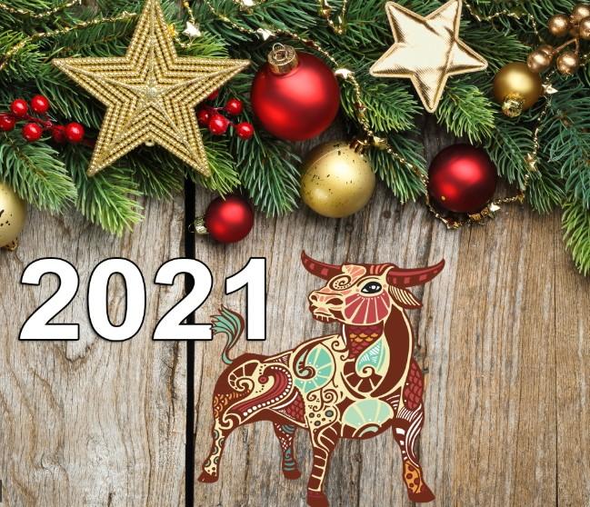Як і в чому зустрічати Новий 2021 рік