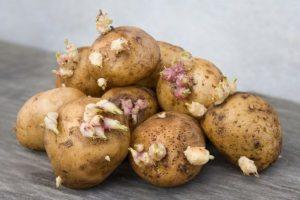 Картопляні секрети
