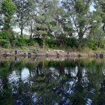 Нова історія  озера Саги