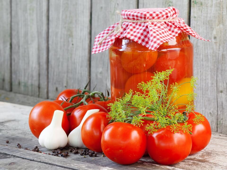 Сеньйори-помідори вже  просяться в льохи